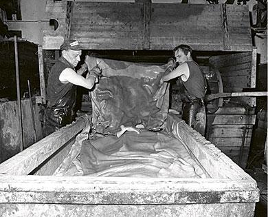 Arbete på läderfabriken i Klippan – tömning av valkar med kohudar som garvats. En värdefull dokumentation av slitsamt fabriksarbete på 1970-talet, ett arbete som i dag inte finns kvar. Från boken Med Klippan i fokus. Foto: Bo Widberg